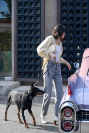 Kendall Jenner Out with Her Dog in Los Angeles 2018/12/16 2