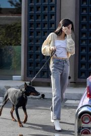 Kendall Jenner Out with Her Dog in Los Angeles 2018/12/16 3