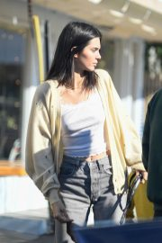 Kendall Jenner Out with Her Dog in Los Angeles 2018/12/16 6