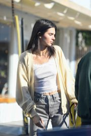 Kendall Jenner Out with Her Dog in Los Angeles 2018/12/16 7