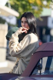 Kendall Jenner Out with Her Dog in Los Angeles 2018/12/16 8