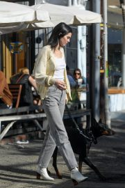 Kendall Jenner Out with Her Dog in Los Angeles 2018/12/16 9