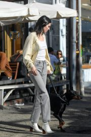 Kendall Jenner Out with Her Dog in Los Angeles 2018/12/16 10