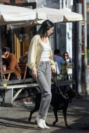 Kendall Jenner Out with Her Dog in Los Angeles 2018/12/16 11