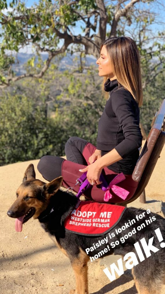 Maria Menounos Out Hiking in Hollywood Instagram Pictures 2018/12/16 1