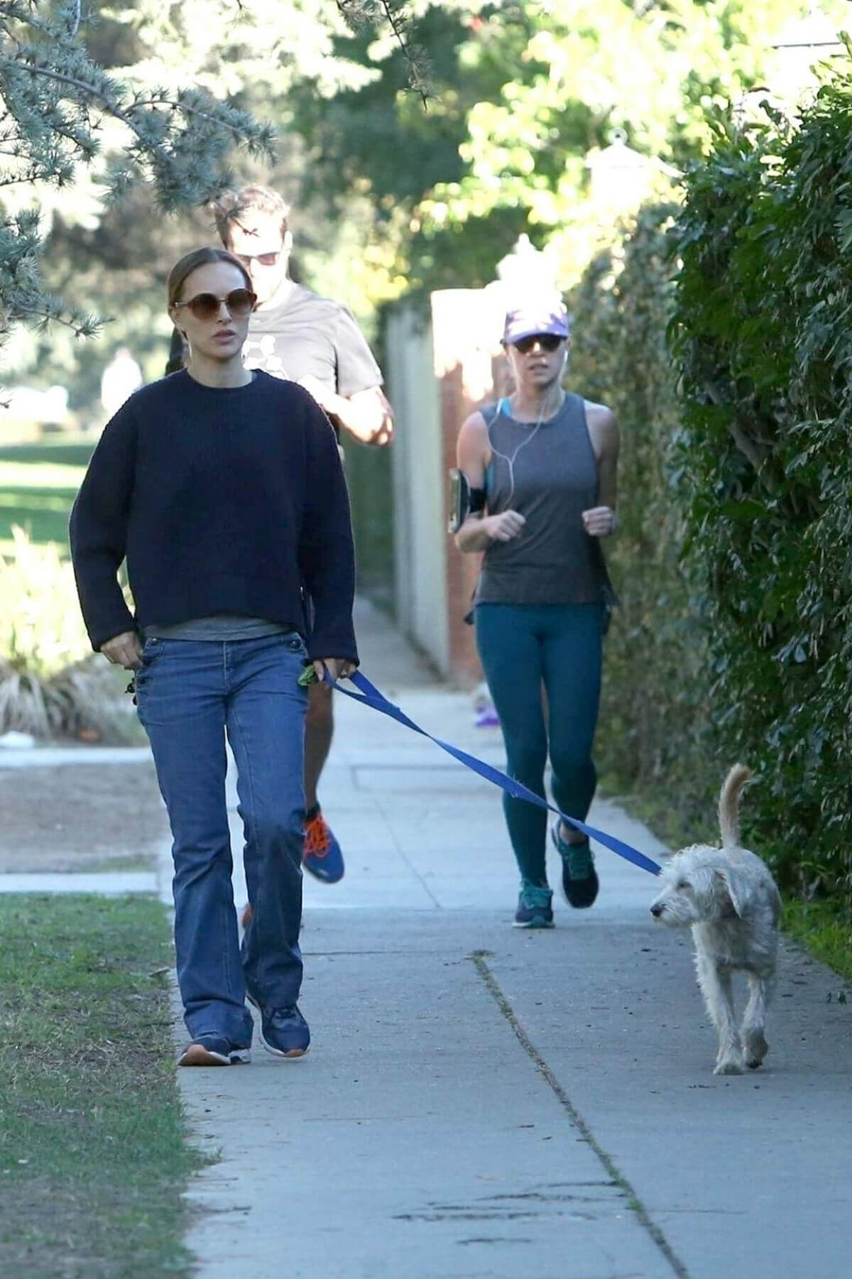 Natalie Portman Out with Her Dog in Los Angeles 2018/12/29 1