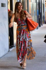 Sofia Vergara Out Shopping in Bal Harbour in Miami 2018/12/04 3