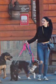 Ariel Winter and Levi Meaden Out with Their Dogs in Los Angeles 2018/12/30 3