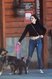 Ariel Winter and Levi Meaden Out with Their Dogs in Los Angeles 2018/12/30 4