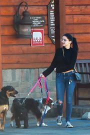 Ariel Winter and Levi Meaden Out with Their Dogs in Los Angeles 2018/12/30 5