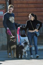 Ariel Winter and Levi Meaden Out with Their Dogs in Los Angeles 2018/12/30 9