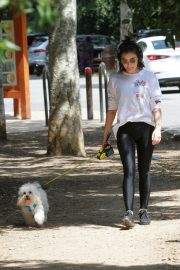 Lucy Hale walk with Her Dog at Los Angeles 2019/05/01 6