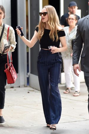 Amanda Seyfried Out in Midtown in New York City 2019/06/22 6