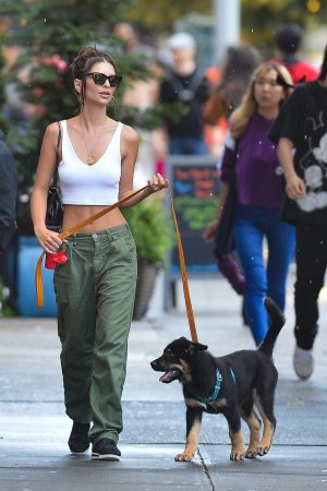 Emily Ratajkowski seen walking her dog in New York City 2019/06/20 1