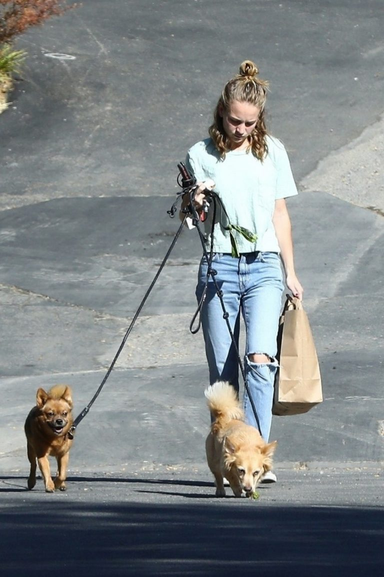 Britt Robertson walks her dogs in Los Angeles 2019/07/23 6