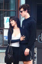 Camila Cabello and Shawn Mendes enjoy a Coffee Date in West Hollywood 2019/07/07 16