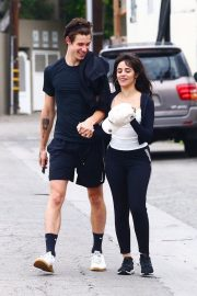 Camila Cabello and Shawn Mendes enjoy a Coffee Date in West Hollywood 2019/07/07 21