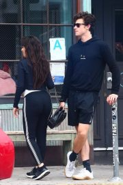 Camila Cabello and Shawn Mendes enjoy a Coffee Date in West Hollywood 2019/07/07 26