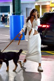 Emily Ratajkowski night out with her dog in New York 2019/07/12 5