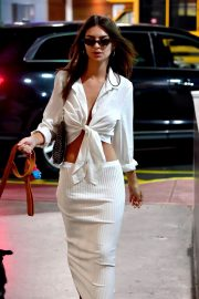 Emily Ratajkowski night out with her dog in New York 2019/07/12 6