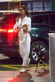 Emily Ratajkowski night out with her dog in New York 2019/07/12 10