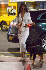 Emily Ratajkowski night out with her dog in New York 2019/07/12 12