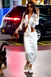 Emily Ratajkowski night out with her dog in New York 2019/07/12 18