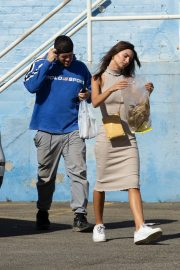 Emily Ratajkowski with Her husband and Pets Out in Los Angeles 2019/10/30 8