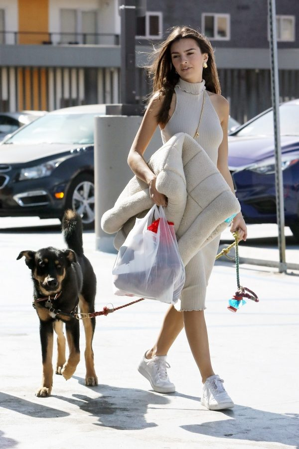 Emily Ratajkowski with Her husband and Pets Out in Los Angeles 2019/10/30 12