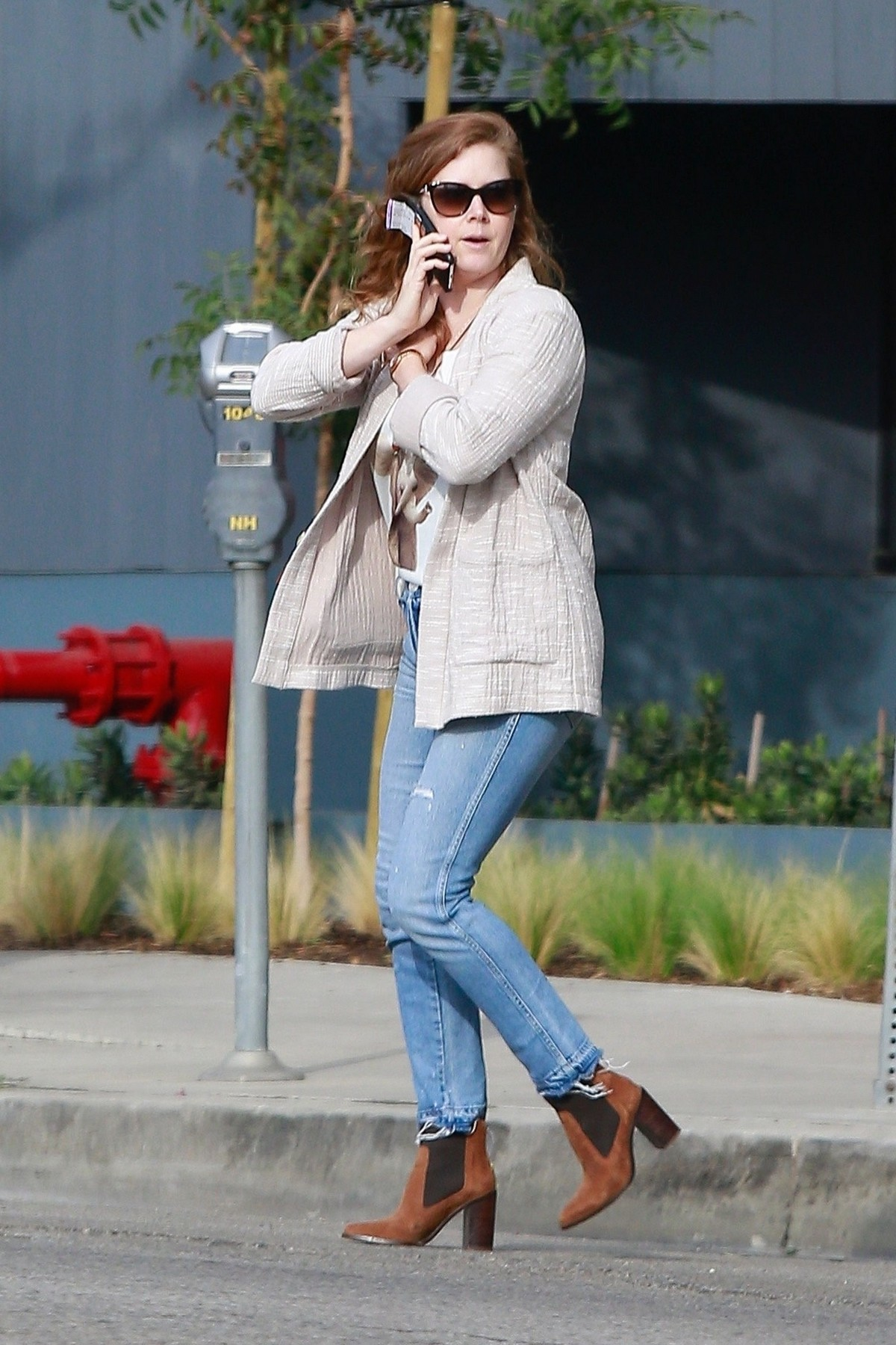 Amy Adams out for lunch at Ca Del Sole Italian Restaurant in Toluca Lake 2019/11/15 5