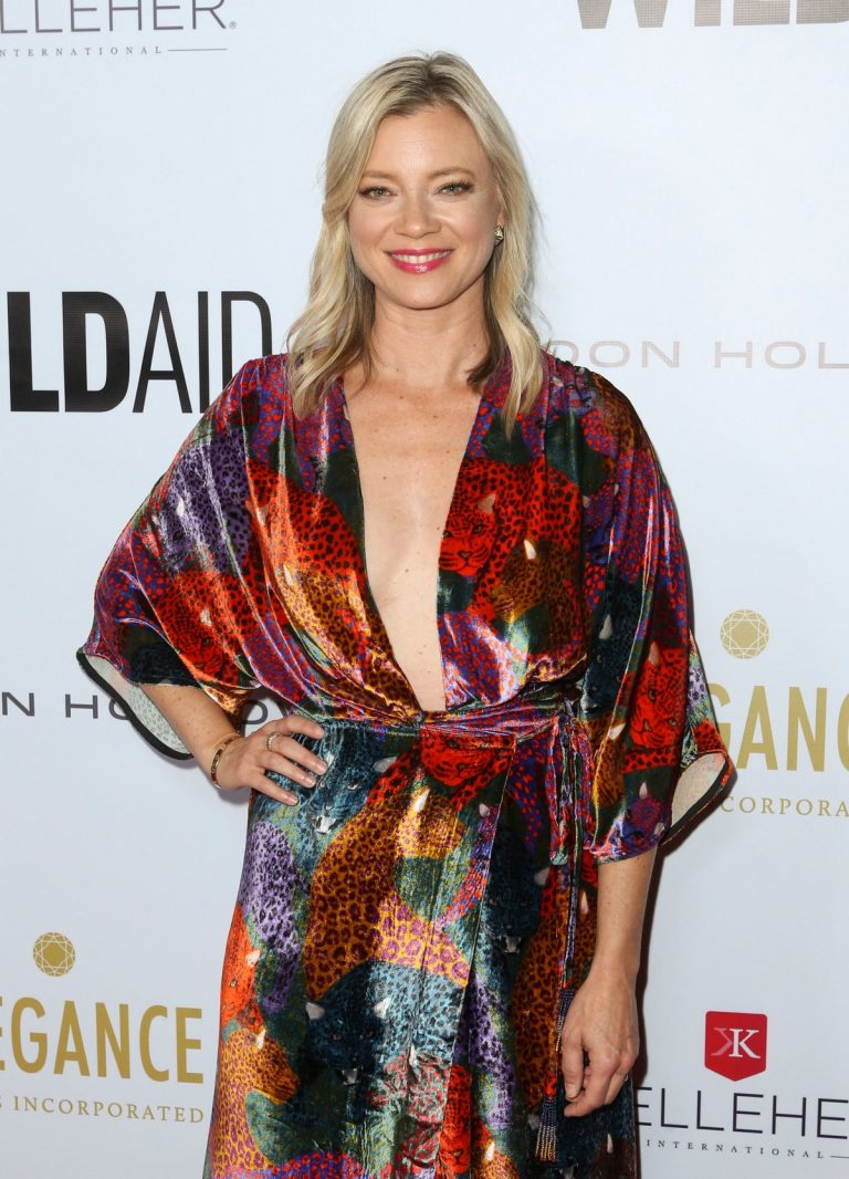Amy Smart attends 2019 WildAid Gala in Beverly Hills 2019/11/09 3
