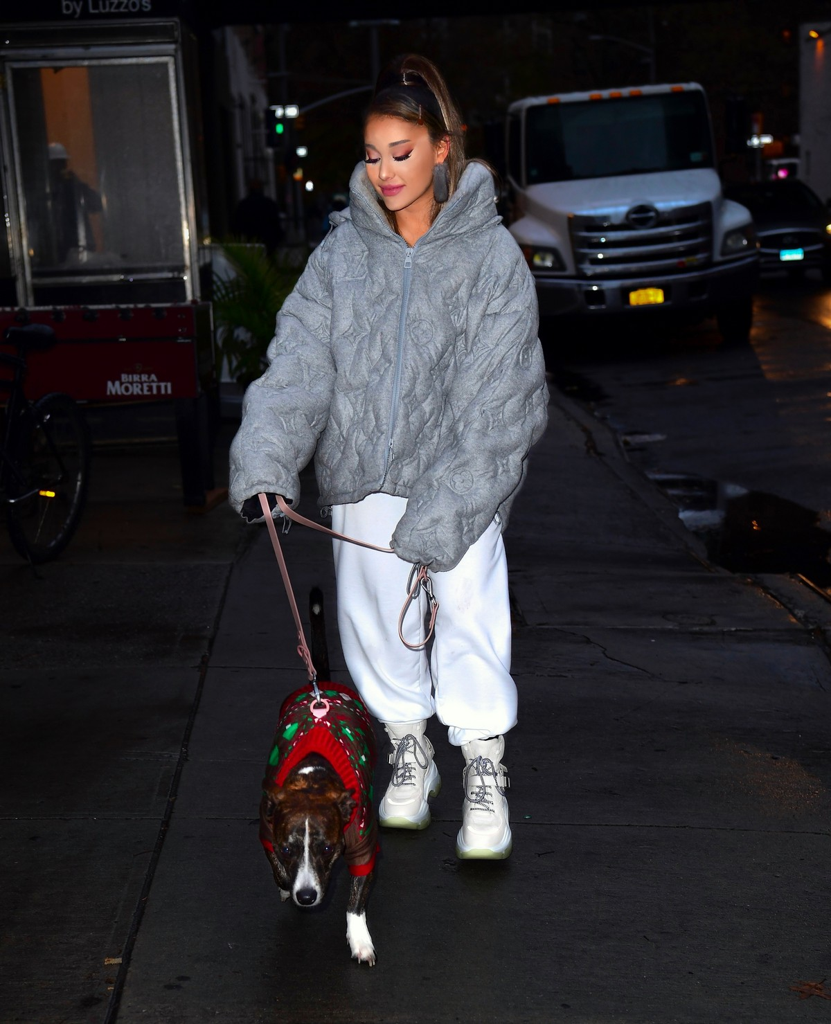 Ariana Grande walk with her dog out and about in New York City 2019/11/18 1