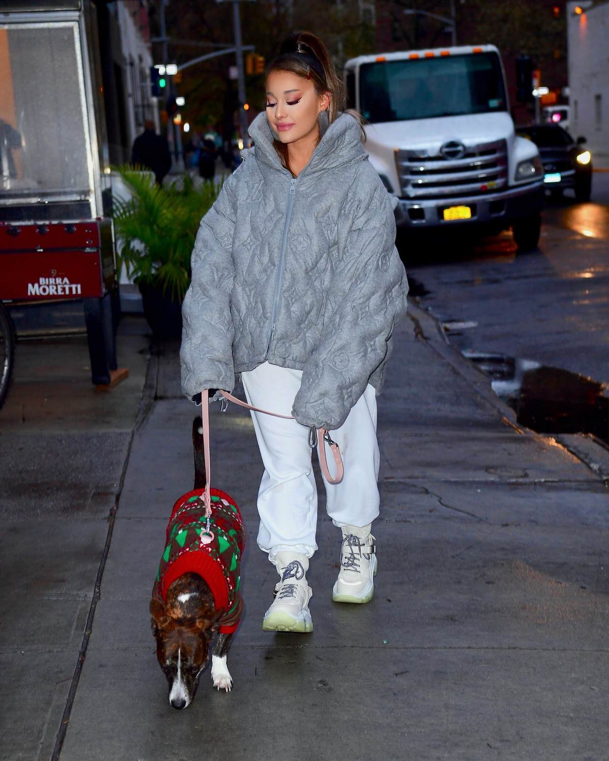 Ariana Grande walk with her dog out and about in New York City 2019/11/18 2