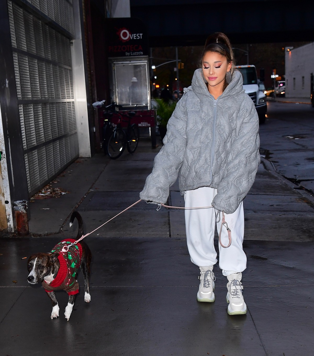 Ariana Grande walk with her dog out and about in New York City 2019/11/18 4