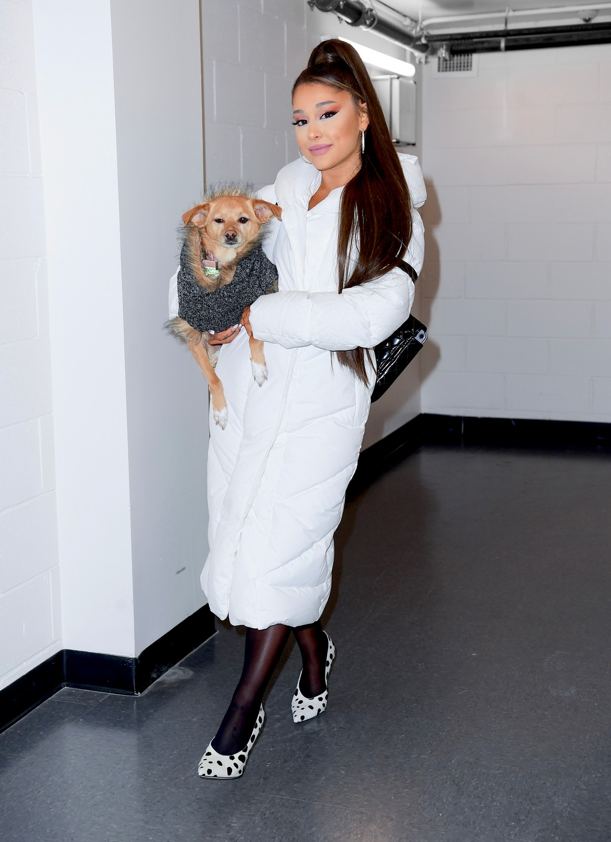 Ariana Grande with her dog on backstage at her Sweetener World Tour Concert in Charlottesville, Virginia 2019/11/16 1