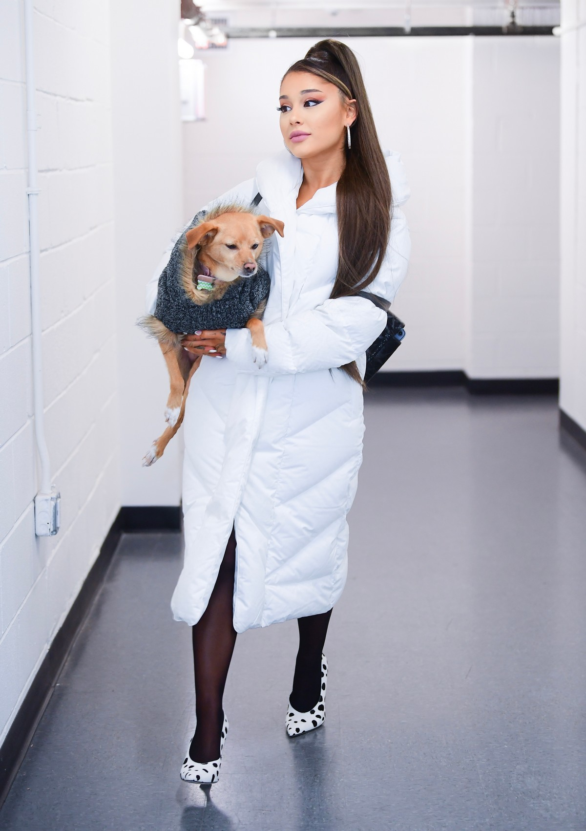 Ariana Grande with her dog on backstage at her Sweetener World Tour Concert in Charlottesville, Virginia 2019/11/16 3