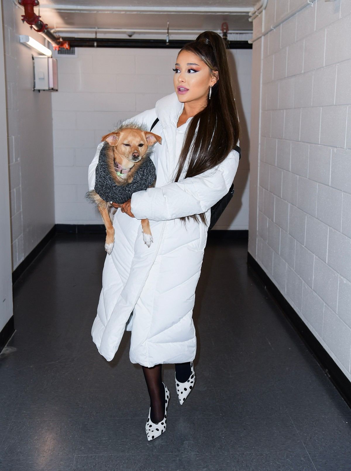 Ariana Grande with her dog on backstage at her Sweetener World Tour Concert in Charlottesville, Virginia 2019/11/16 4