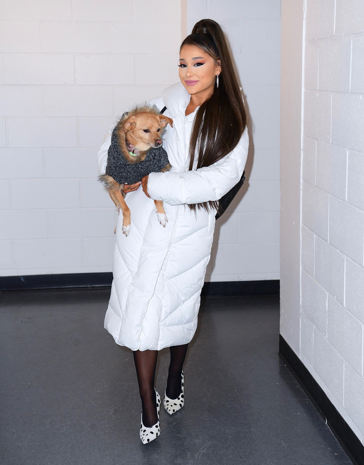 Ariana Grande with her dog on backstage at her Sweetener World Tour Concert in Charlottesville, Virginia 2019/11/16 5