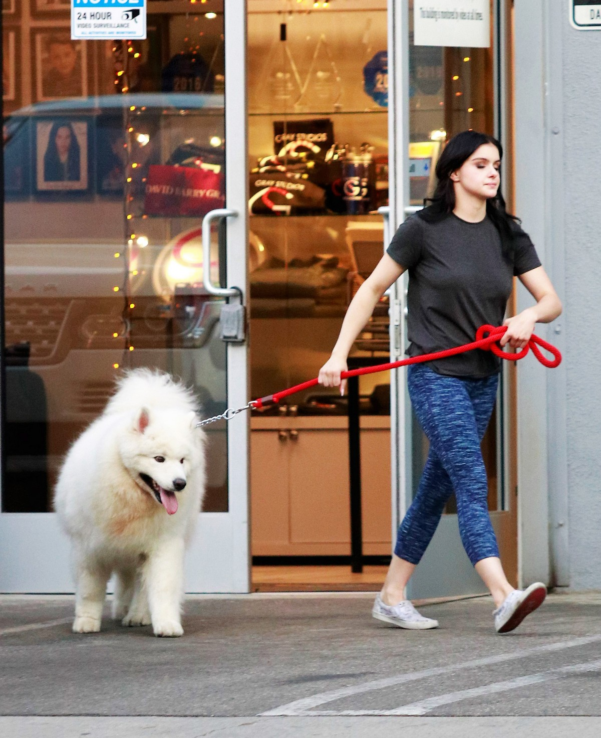 Ariel Winter seen with her dogs at a salon in Los Angeles 2019/11/04 1