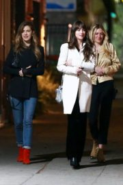 Dakota Johnson with Her Friends out for Dinner in Los Feliz 2019/11/23 5