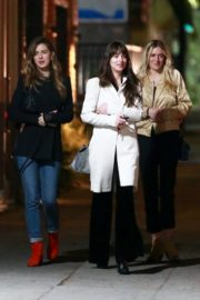 Dakota Johnson with Her Friends out for Dinner in Los Feliz 2019/11/23 6