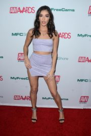 Emily Willis attends Adult Video News Awards Nominations Announcement in Hollywood 2019/11/21 1