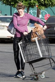 Pregnant Danielle Panabaker grocery shopping out in Hollywood 2019/11/08 5