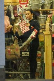Demi Lovato shopping at a Cost Plus Market in Westwood 2019/12/18 5