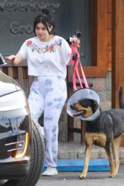 Ariel Winter with her dogs after visiting the vet in Studio City 2020/01/31 2