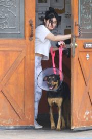 Ariel Winter with her dogs after visiting the vet in Studio City 2020/01/31 5