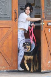 Ariel Winter with her dogs after visiting the vet in Studio City 2020/01/31 7