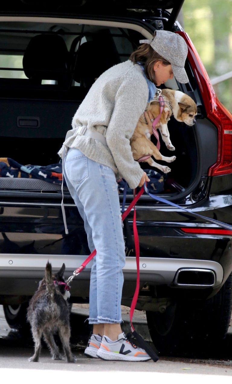 Calista Flockhart walks with her dogs in Los Angeles 2020/04/03/2020 3