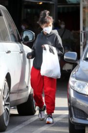 Christina Milian and Matt Pokora Shopping at the Market in Los Angeles 2020/04/04 7