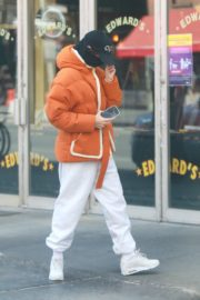 Emily Ratajkowski with her husband Sebastian Bear-McClard out and about in New York City 2020/04/04 5